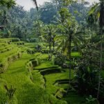 Portada viaje a Bali